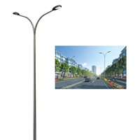 energy solar low price street light column (YLDG-S)