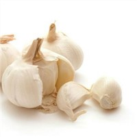 Garlic Extract (1% Allicin)