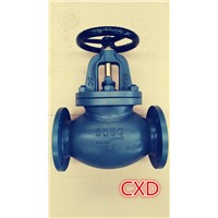 JIS F7311 cast steel globe valves 5K