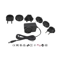 12V1A Interchangeable plug power adapter