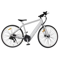 Aluminium Alloy Lithium Battery Mountain Electric Bike with Shimano, 21-Speed (TDE-035D)