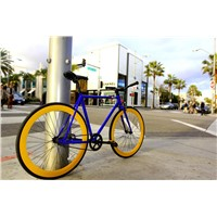 Fashionable Design 700X25c 4130cro-Mo Frame City Bicycle (BE-004)
