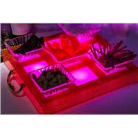 LED Fruit Dish Suit:BC-016