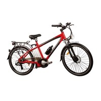 Light Weight Aluminium Alloy Lithium Mounthium Battery Electric Bike (TDE-015)