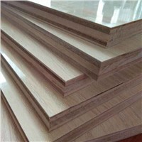 1220*2440mm Customized E1 Glue Constuction Film Faced Plywood