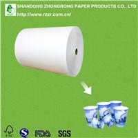PE coated paper cup raw materials