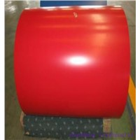 Prepainted MATT steel coils from China supplier for construction materials