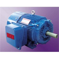 NEP Series High Efficiency Motor