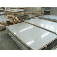 Cold/Hot Rolled 304 Stainless Steel Sheet/Plate