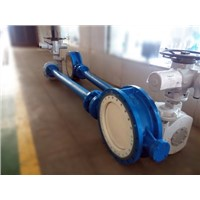 Extended stem electric butterfly valve