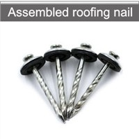 Roofing Screw Nails with Washers