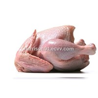 Grade A Frozen Whole Chicken
