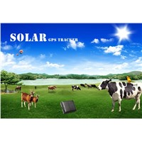 Ultra-long battery life solar power cow container gps tracker solar panel power supply
