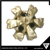 API Certification and Well Drilling Use Steel Body PDC Bits