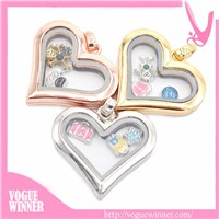 Stainless Steel Open Book Silver Glass Living Floating Memory Lockets Necklace