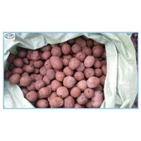 10-30mm Bulk Hydro Expanded Clay pebbles as growing medium for hydroponics