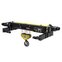 Electric Wire Rope Hoist 10 ton Manufacturer