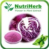 Natural Extract Red Cabbage Color