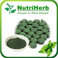 Natural Organic Chlorella powder