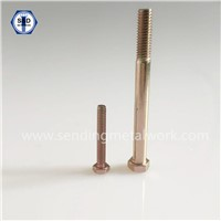 SAE J429 Hex Cap Screw/Hex Head Bolts