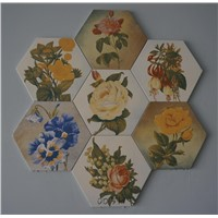hexagonal ceramic brick floor tile