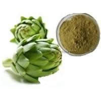 High Quality Artichoke Extract 5% Cynarin UV