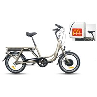 Electric bike city cargo model (TDN03Z)