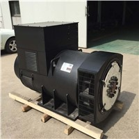 1250kva/ 1000kw Alternator/ Generator Head