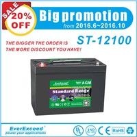 EverExceed Standard AGM range VRLA Battery