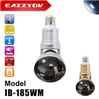 CCTV Bulb Security DVR Camera