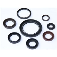 Hydraulic Auto Rubber Oil Seals