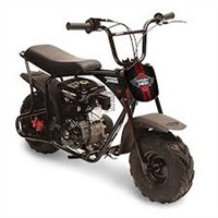 Critter 80cc Youth Mini Bike
