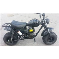 Trailmaster Mini Bike with Torque Converter