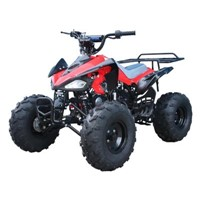 Taotao Cheetah 110cc Kids ATV