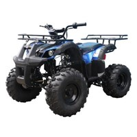 Taotao TFORCE 110cc Kids ATV