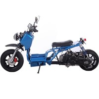 Ice Bear Ruckus Clone Maddog 50cc Gas Scooter
