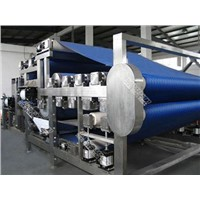 TRIOWIN|Turnkey Industrial Solution for Carrot Juice Processing Line&Machinery&Equipment