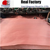 reconstituted red birch wood veneer 2*8factory supplying cheap price high quality