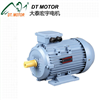 MS Three Phase Electrical Motor