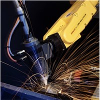 6 Axis Automatic Welding Robot Arm for Welding Iron