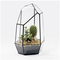 Metal Frame Glass Terrarium Vase Airplants Glass Bottle Beautiful Glass Gift