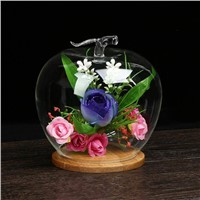 Apple Shaped Glass Dome Home Decoration Glass Vase with Bamboo Base Wedding Glass Gift
