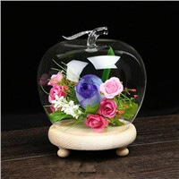 Apple Shaped Glass Dome Home Decoration Glass Vase with Wooden Base Business Gift