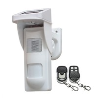 Standalone Outdoor detector