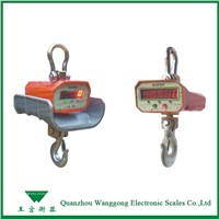 Electronic Crane Weighing Scales for Metallurgy