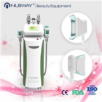 Multi-Functional Beauty Equipment Cool Tech Fat Freezing Slimming Machine Cryolipolysis Device for Salon Use