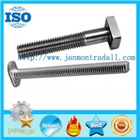 T bolt,T bolts,Special T bolt,Special T bolts,T type bolt,T type bolts,Steel T bolt,Steel T bolts