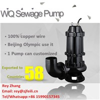 5hp Submersible Mud Pump with Flange Electric Submersible Sewage Pump 440v with Coupling Device