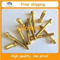 Free Shipping! Gr5 Ti6Al4V DIN912 GOLD Titanium Ti Bolt Screw M6 x 35mm Allen Head Ror Headset