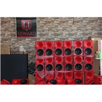 12'' Wood Horn PA Speaker Pro Audio
